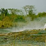 Экспедиция в Африку. Горные гориллы и сафари в Уганде.